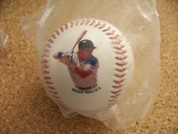 Colorado Rockies Larry Walker baseball photo ball 1995 stats
